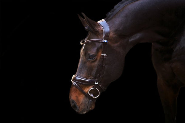 Paladin bridle, Snaffle Bridle, Ps of Sweden - Laura's Tack Room