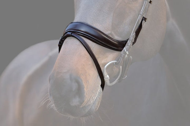 Paladin Noseband, Noseband, Ps of Sweden - Laura's Tack Room