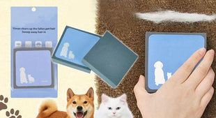 Pet Hair Cleaning Brush, Borstels, TAONMEISU Store, Live Your Expression