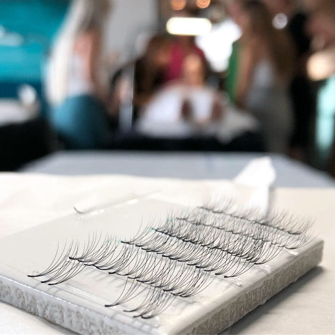 Lash Trays at Volume Lash Mastery Course in Brisbane