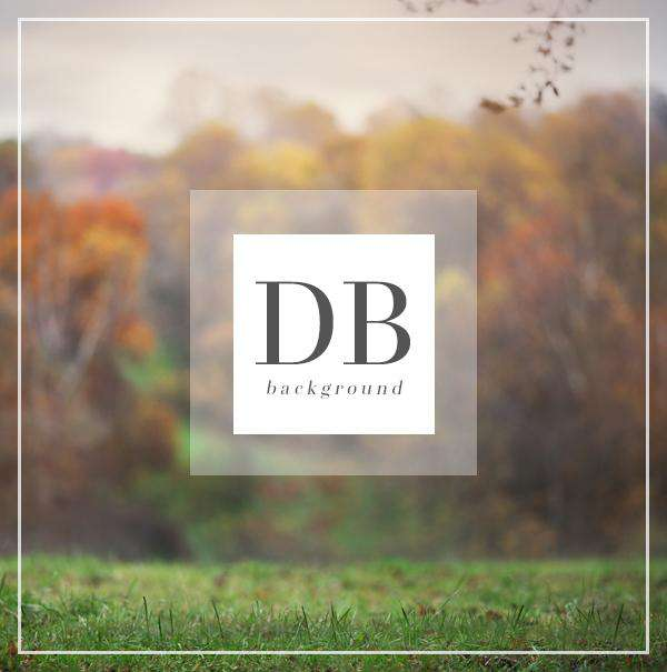 Autumn Field Digital Background for Photography | Bellevue Avenue