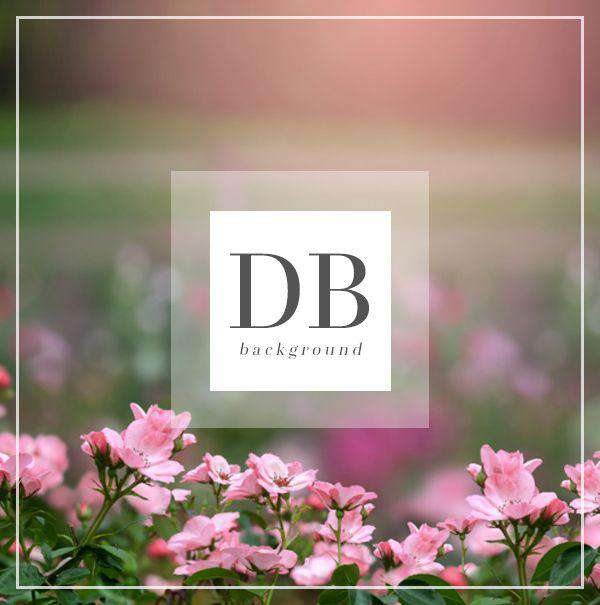 Pink Flower Digital Background for Photography | Bellevue Avenue