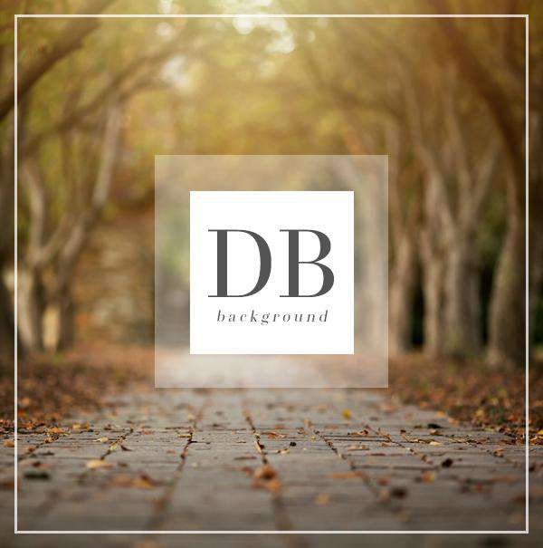 Autumn Path Digital Background for Photography | Bellevue Avenue