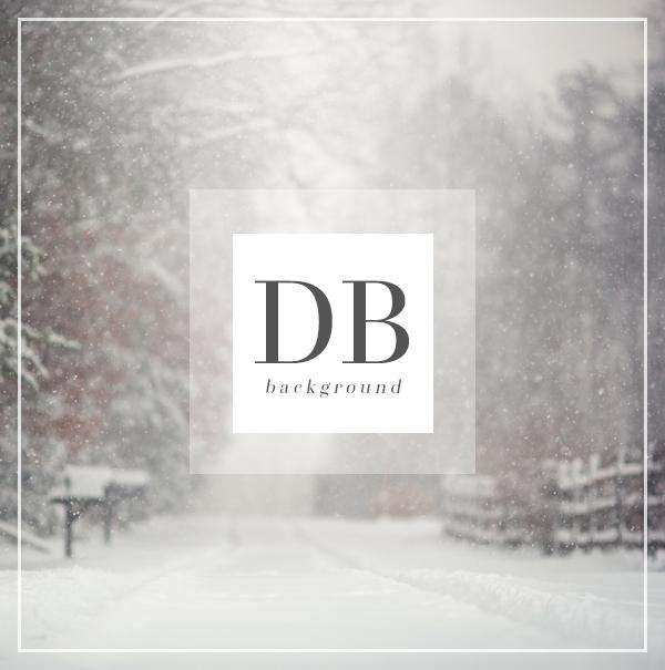 Winter Snow Digital Background for Photography | Bellevue Avenue