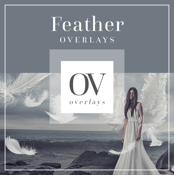 Feather Overlays for Photoshop | Bellevue Avenue