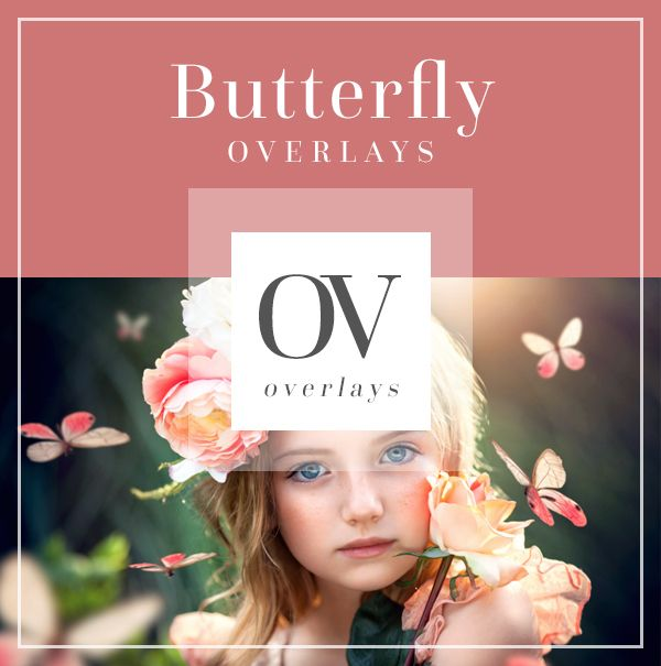 Butterfly Overlays for Photographers | Bellevue Avenue