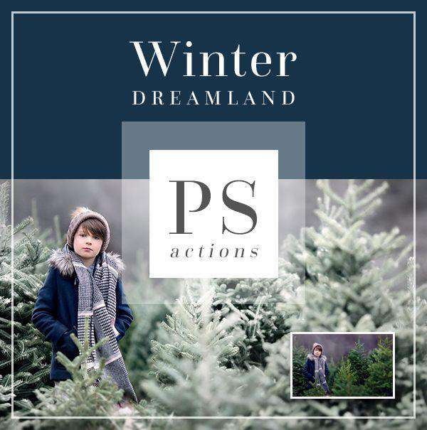 Winter Dreamland Photoshop Actions