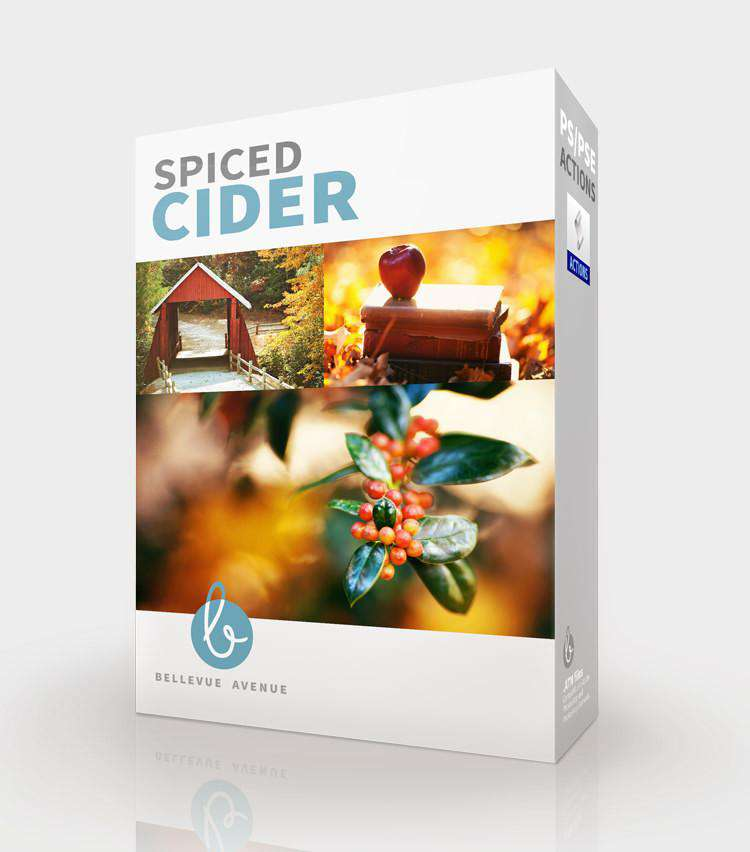 Spiced Cider Photoshop Actions