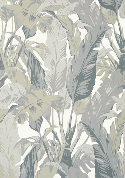 Thibaut Palm Print Wallpaper