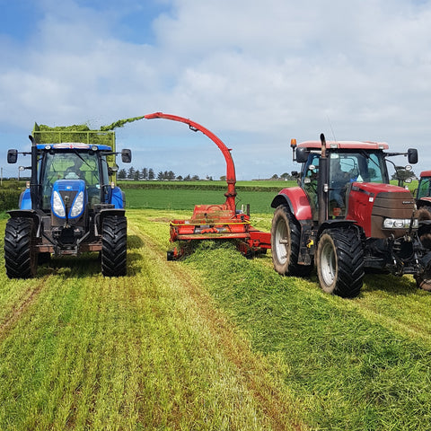 Harvesting Grass Silage