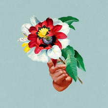 "Maribou State - Kingdom In Colour (Turquoise Vinyl ) ""Pre-Order"" Out 7/9"