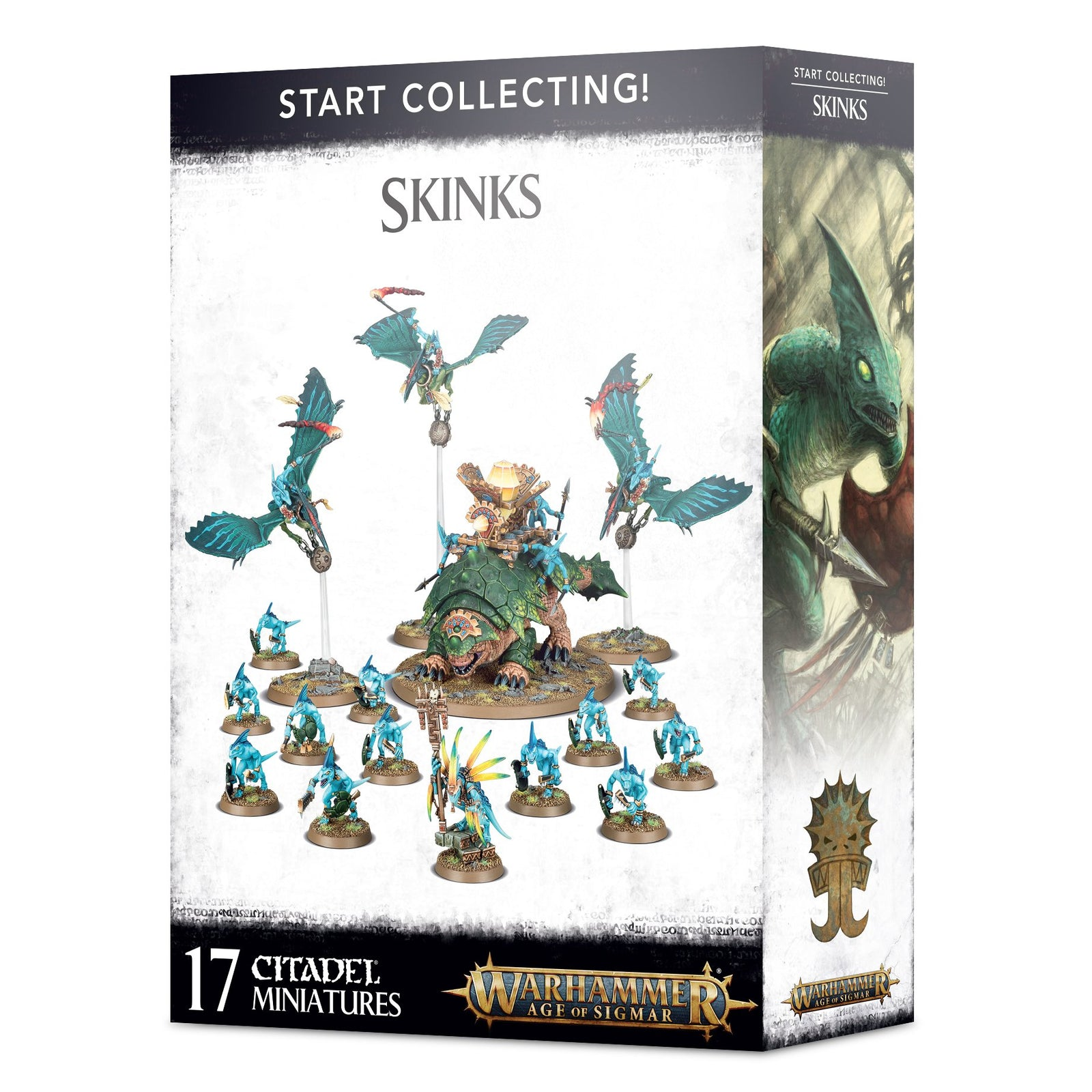 AOS START COLLECTING! Skinks