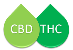 Cbd Oil For Ibs How Cbd Oil Can Help With Ibs Symptoms