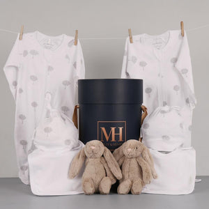 Twin Beautiful Baby Unisex Hamper
