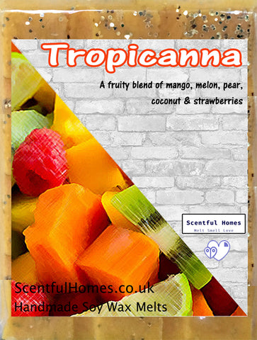 Tropical Fruits ~ Fragranced Wax Melts