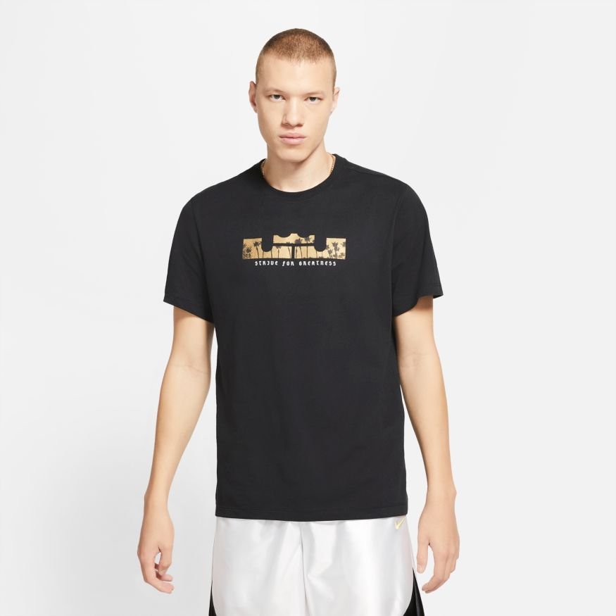 LeBron James Strive For Greatness Logo Dri-Fit NBA T-Shirt