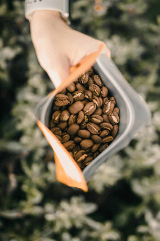 How to Start a Cafe Business: Learn how to make the best coffee