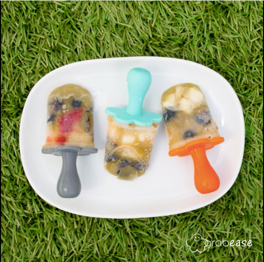 Quick and Easy yummy popsicles your baby will love!