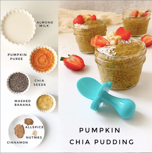 Pumpkin Chia Pudding for Baby