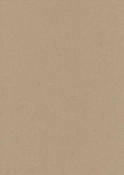 Speckletone Kraft Paper and Card 100% Recycled (20 pack)