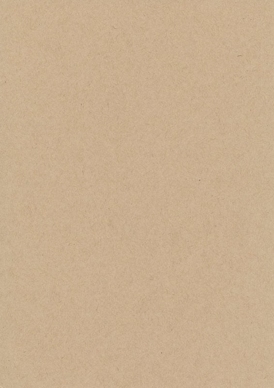 Speckletone Oatmeal Paper and Card 100% Recycled (20 pack)