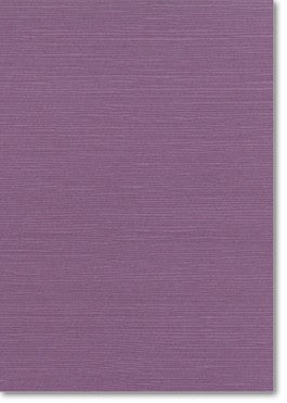 CLEARANCE: (2 Pack) Zsa Zsa Eggplant Card - Paper Bliss