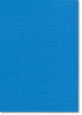 CLEARANCE: Zsa Zsa Cornflower Paper (10 Pack) - Paper Bliss