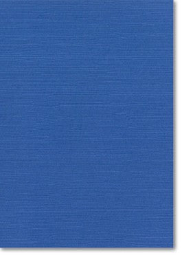 Zsa Zsa Blueberry Paper and Card (20 pack)