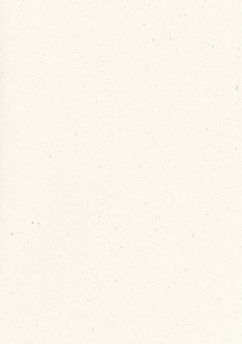Speckletone True White Paper and Card 100% Recycled (20 pack)