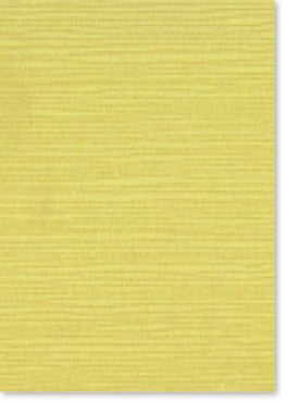 Zsa Zsa Lemon Sorbet Paper and Card (20 pack)