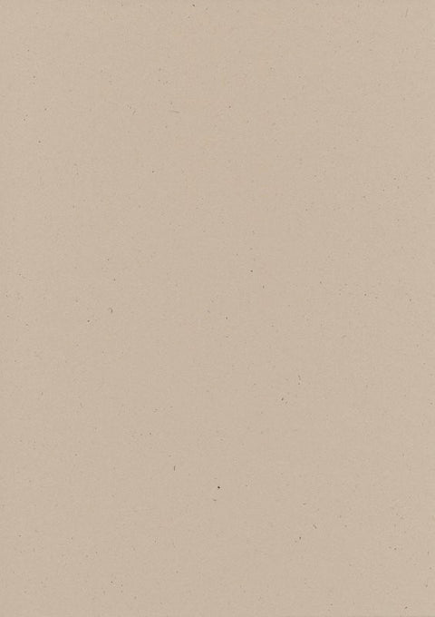 Speckletone Natural Paper and Card 100% Recycled (20 pack)