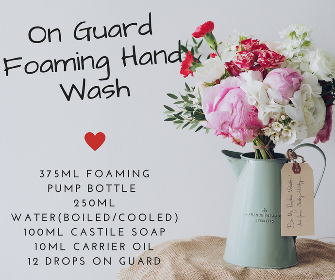 DIY Foaming Hand/Body Wash