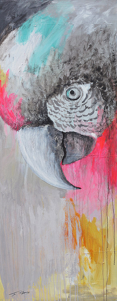 Macaw Parrot - Jo Stanes