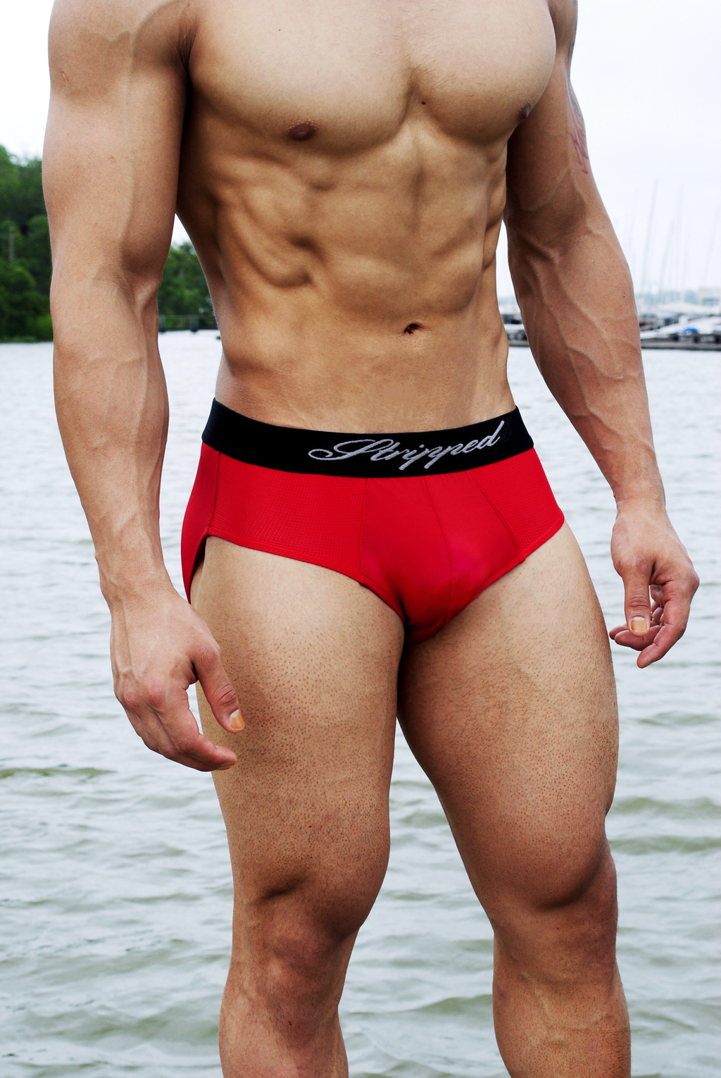Red Brief