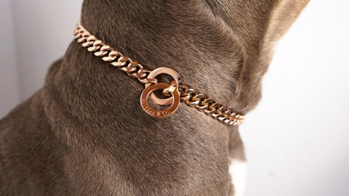 Rose Gold Choke Chain