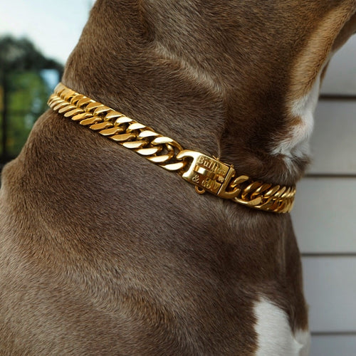 Gold Cuban Link Clasp (NEW RELEASE*) - Bulliesandco