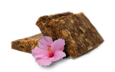 shea butter, african black soap, skin care, TouShea, TouShea logo, psoriasis, eczema, luxury soap, soap, skin, health, wellness, body care, unscented, skin, sensitive skin, acne