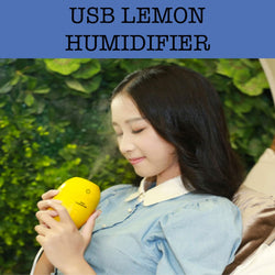 usb lemon humidifier corporate gifts