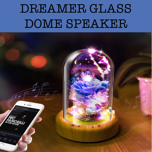 dreamer glass dome speaker corporate gift door gift
