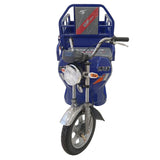 BOJI BJ-SW100 1M Old Age Scooter Pull Cargo Climbing Electric Tricycle E-Bike, Electric three-wheeled truck