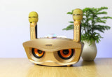Bluetooth Karaoke Speaker SD-306 | Strange Designs Give 2 Microphones- Gold