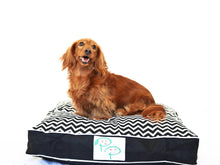 MODERN DESIGNER DOG BED - BLACK & WHITE CHEVRON - Pet Pouch