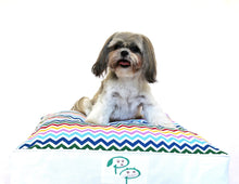 MODERN DESIGNER DOG BED - MULTI-COLOURED CHEVRON - Pet Pouch