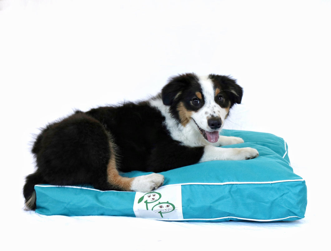 WATERPROOF DESIGNER DOG BED - AQUA BLUE - Pet Pouch