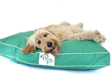 WATERPROOF DESIGNER DOG BED - GREEN - Pet Pouch