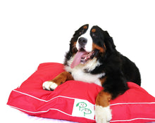 WATERPROOF DESIGNER DOG BED - RED - Pet Pouch