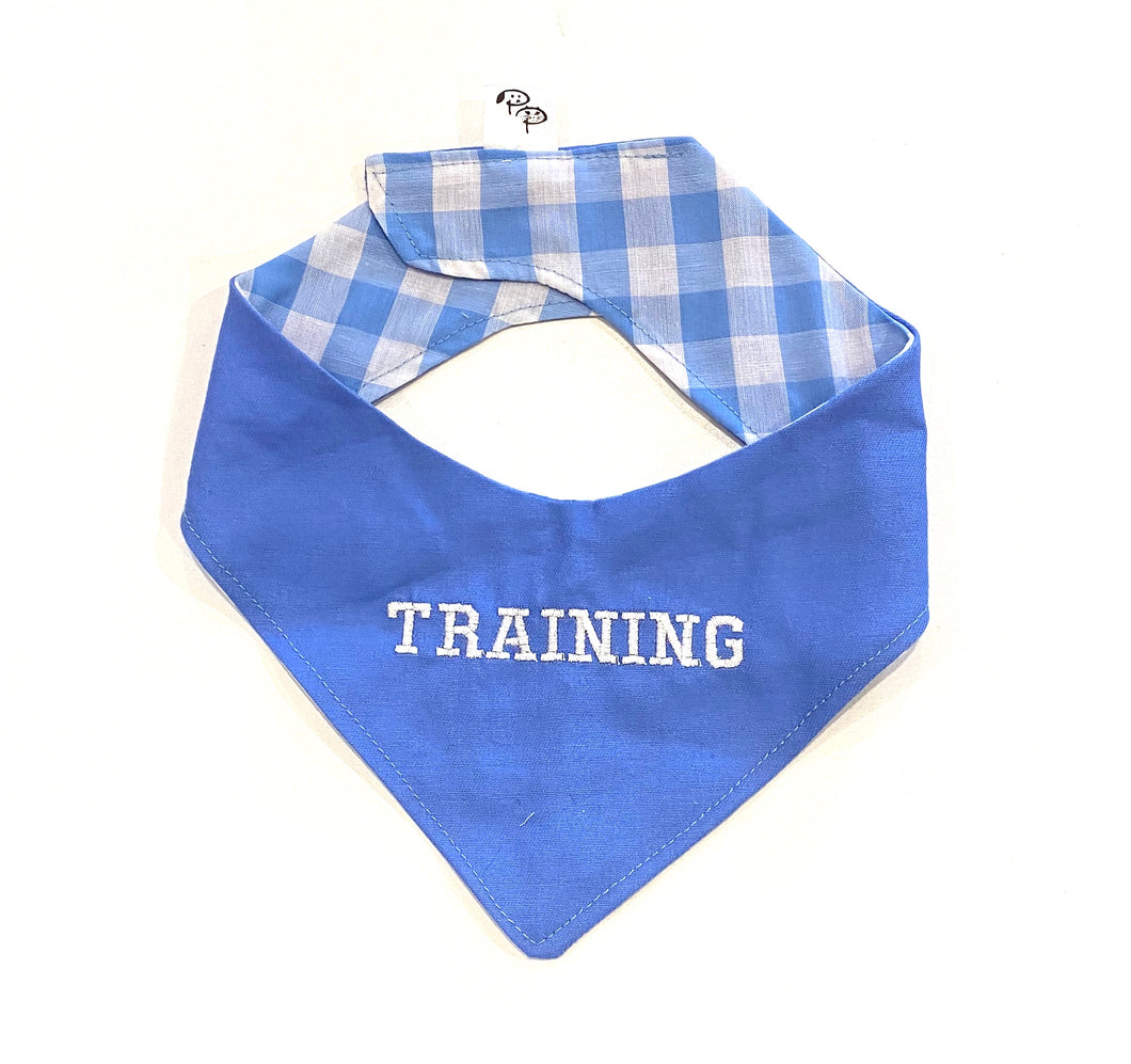 TRAINING BLUE - DOG BANDANA - Pet Pouch