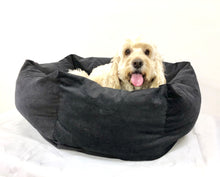 SNUGGLE HEXABED - BLACK CORDUROY - Pet Pouch