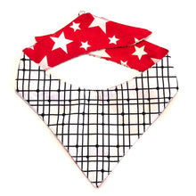 TAKE 2 - DOG BANDANA - Pet Pouch