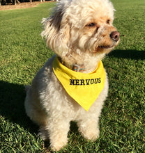 NERVOUS YELLOW - DOG BANDANA - Pet Pouch
